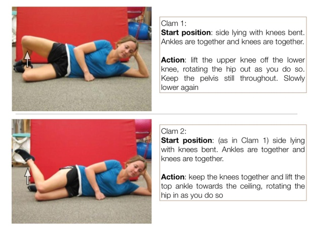 Gluteus Medius eccentric exercises | Physiotherapy and ...